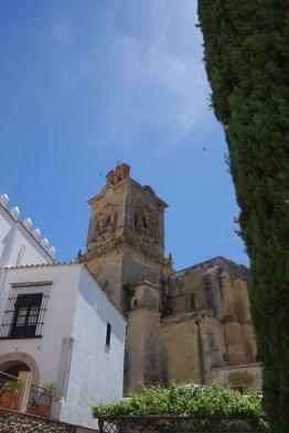 San Pedro2